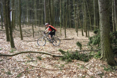 ADFC_MTB_Tour_Siebengebirge_23_April_2006_-_20